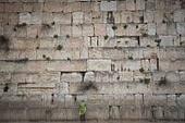 """هل يُعدّ """"حائط المبكى"""" بالفعل أقدس مكان لدى اليهود؟"""